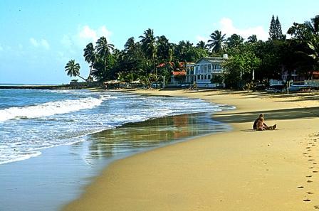 A beach and jungle scene in Playa Cabarete