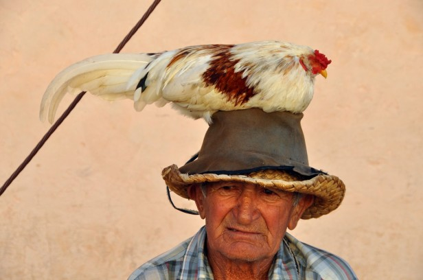 Man with chicken on his head in Trinidad
