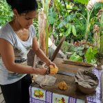 Cuban woman taking cocoa seeds out of a plant