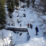 A group of students walking in the snowy forest with snowshoes on