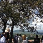 A group of people enjoying the view from Lucca's rooftop garden wall with a green tree in the foreground