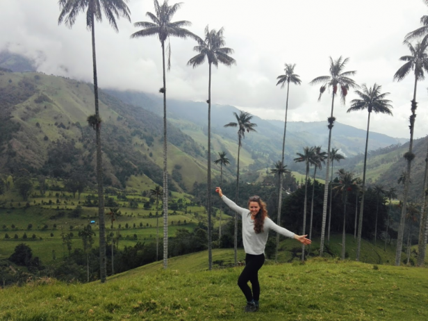 Tall palm trees, misty valley, girl with arms up