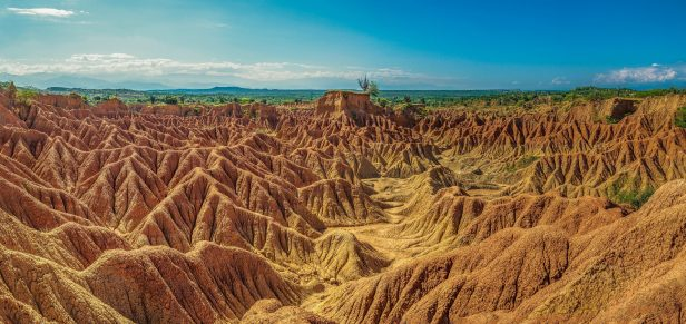 orange lanscape of tatacoa desert
