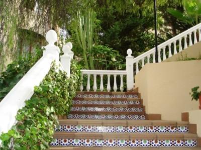 Beautiful steps in school garden